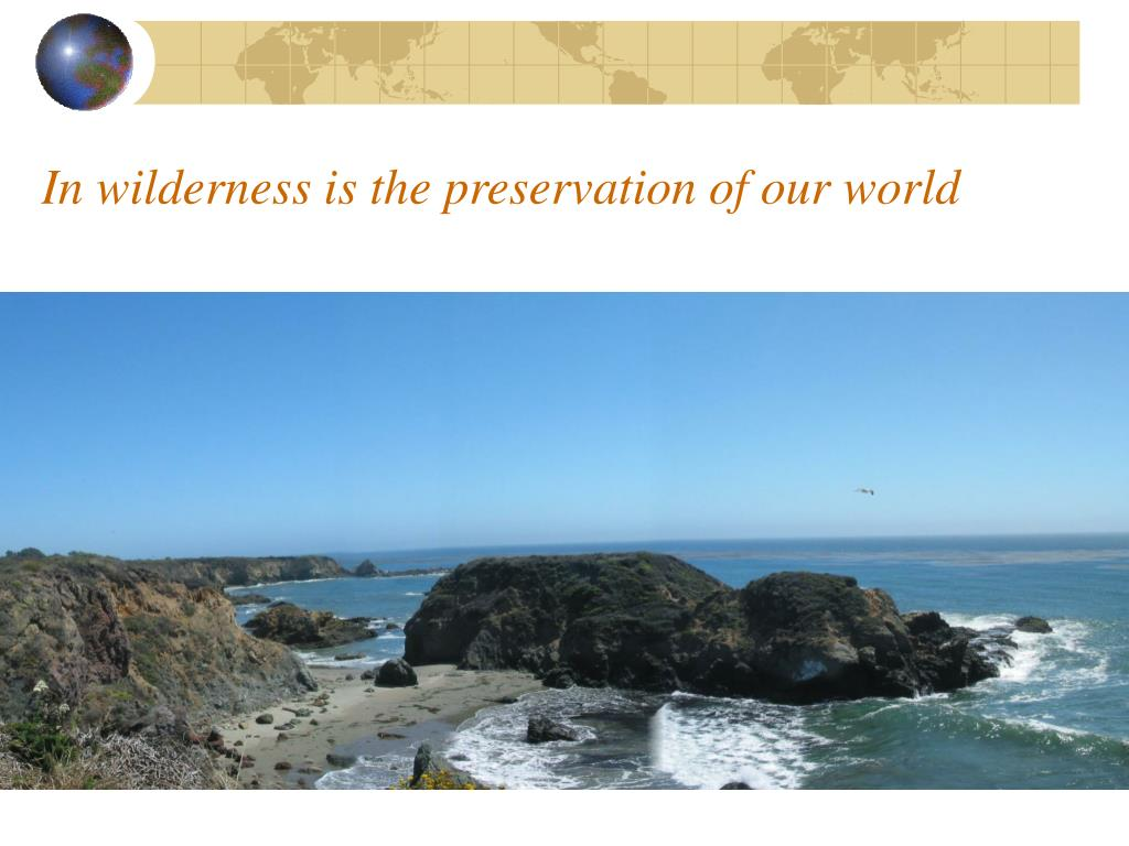 In wilderness is the preservation of our world