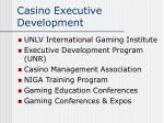 casino executive development