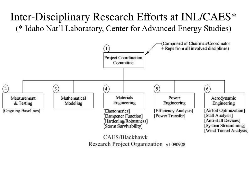 Inter-Disciplinary Research Efforts at INL/CAES*