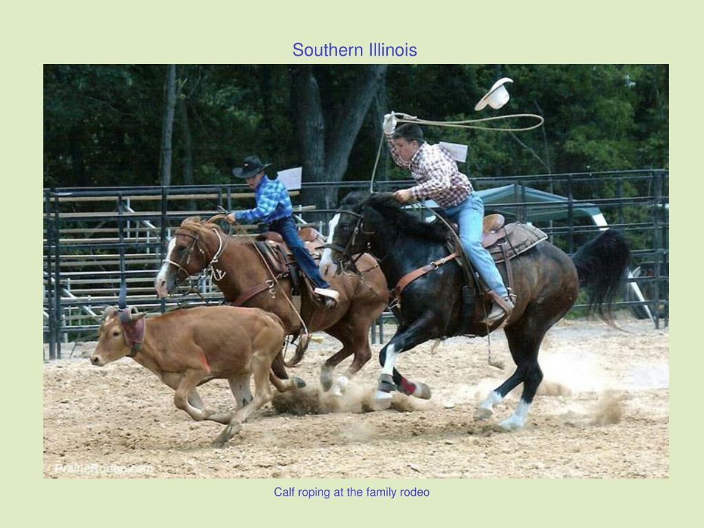 Calf roping at the family rodeo