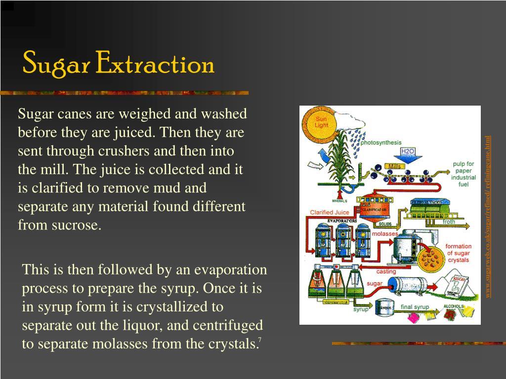 Sugar Extraction