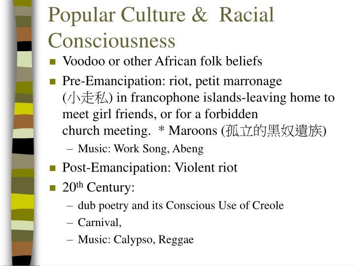 Popular culture racial consciousness