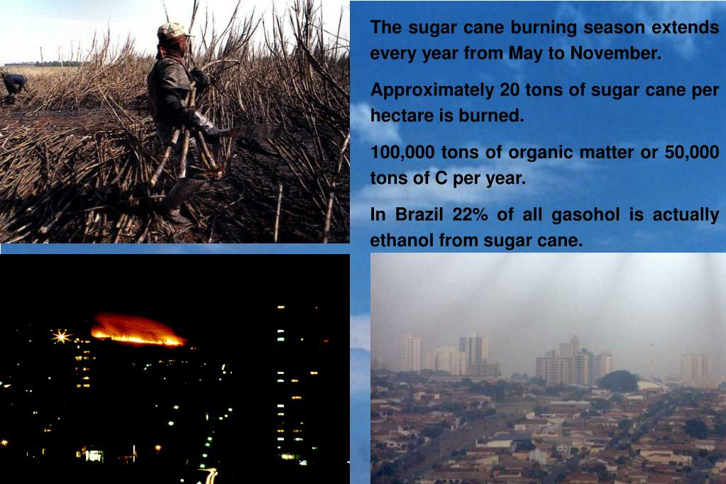 The sugar cane burning season extends every year from May to November.