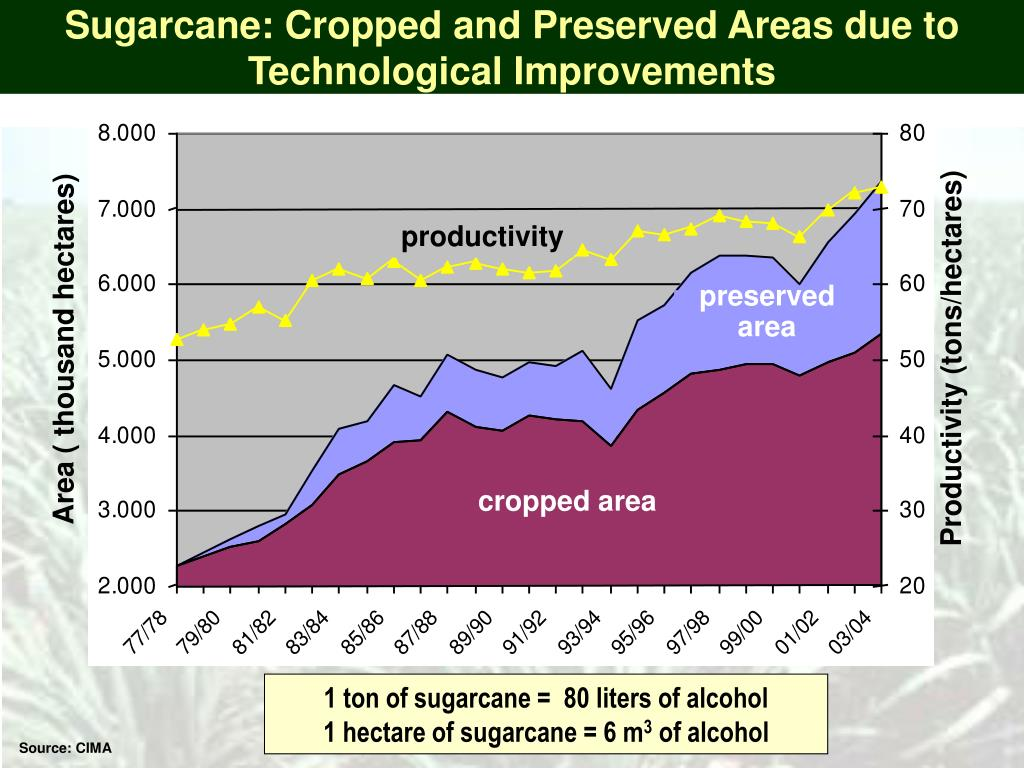 Sugarcane: Cropped and Preserved Areas due to Technological Improvements