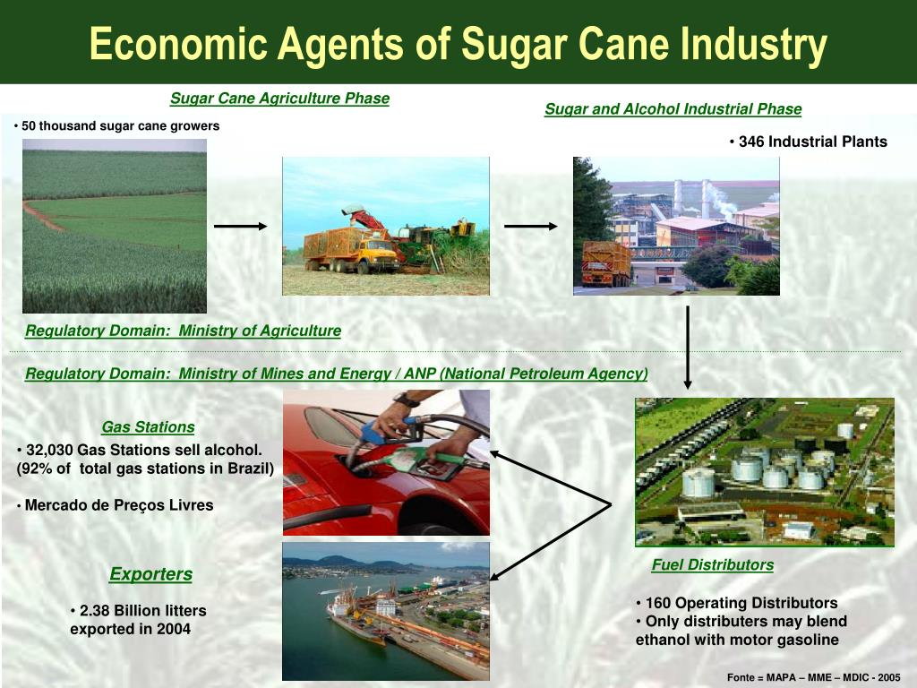 Economic Agents of Sugar Cane Industry