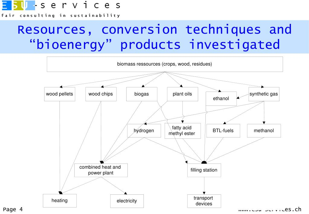 """Resources, conversion techniques and """"bioenergy"""" products investigated"""