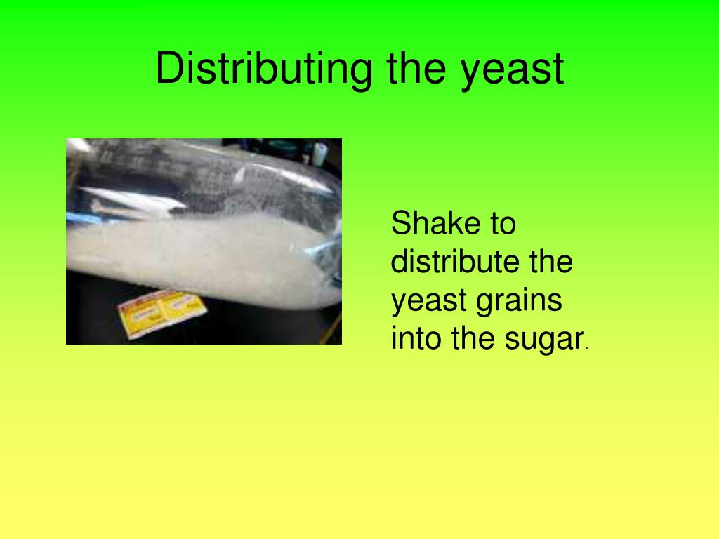 Distributing the yeast