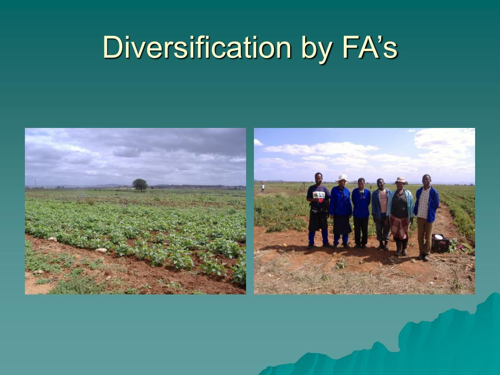 Diversification by FA's