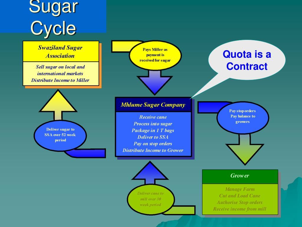 Sugar Cycle