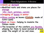 plant adaptations a review