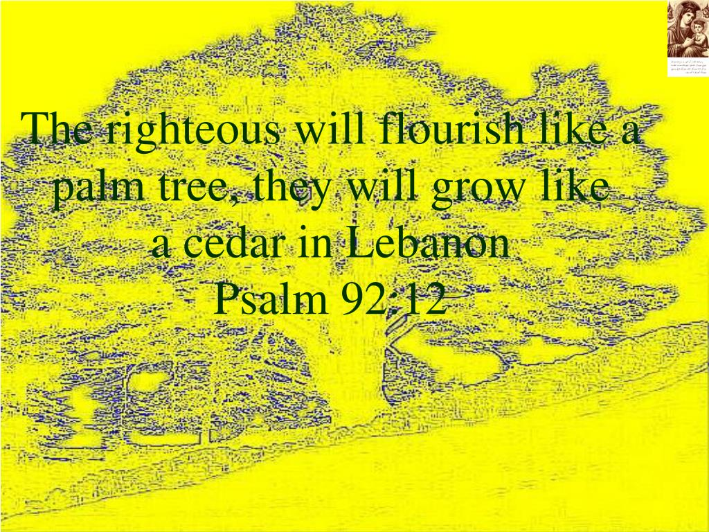 The righteous will flourish like a