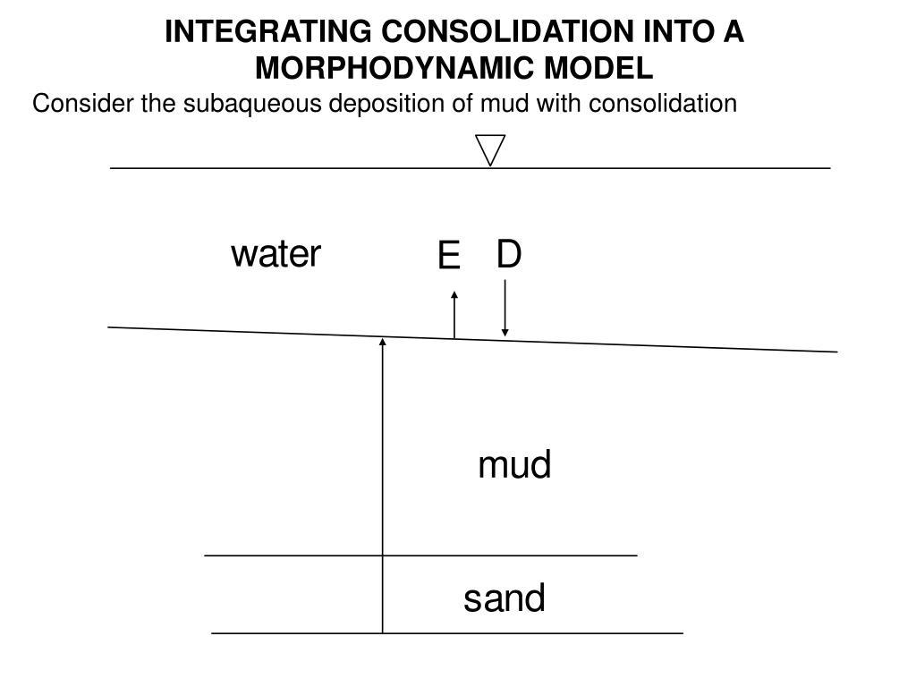 INTEGRATING CONSOLIDATION INTO A MORPHODYNAMIC MODEL