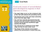 coral reefs consist of several distinct parts developed in response to their exposure to waves