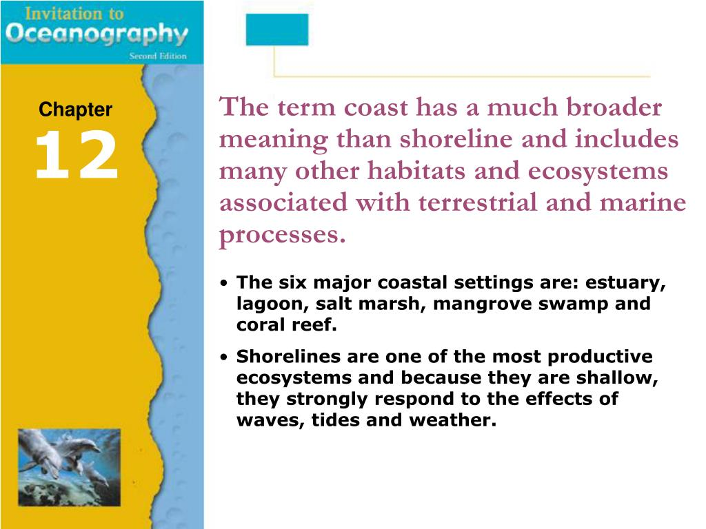 The term coast has a much broader meaning than shoreline and includes many other habitats and ecosystems associated with terrestrial and marine processes.
