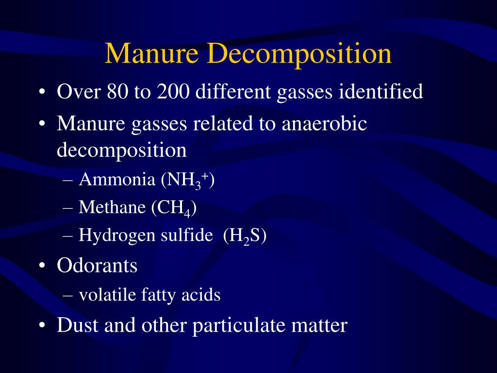 Manure Decomposition