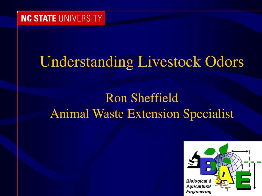 understanding livestock odors ron sheffield animal waste extension specialist l.