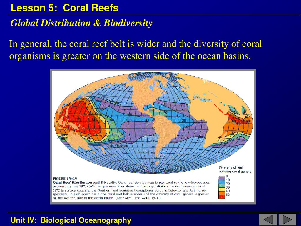 Global Distribution & Biodiversity