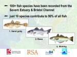 100 fish species have been recorded from the severn estuary bristol channel