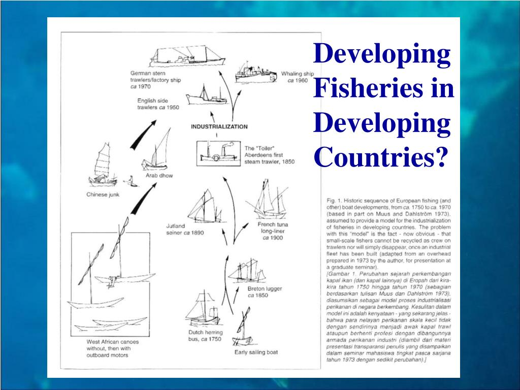 Developing Fisheries in   Developing Countries?