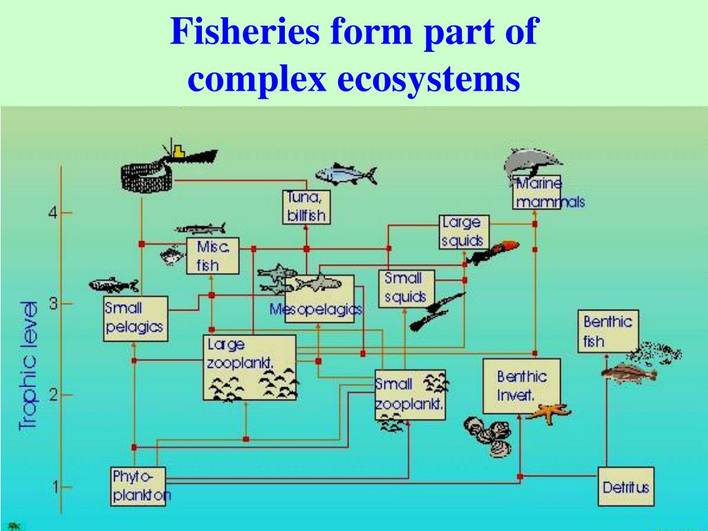 Fisheries form part of