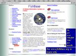 see www fishbase org to learn why