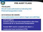 pre audit flags