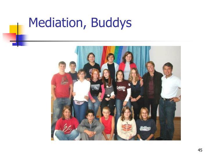 Mediation, Buddys