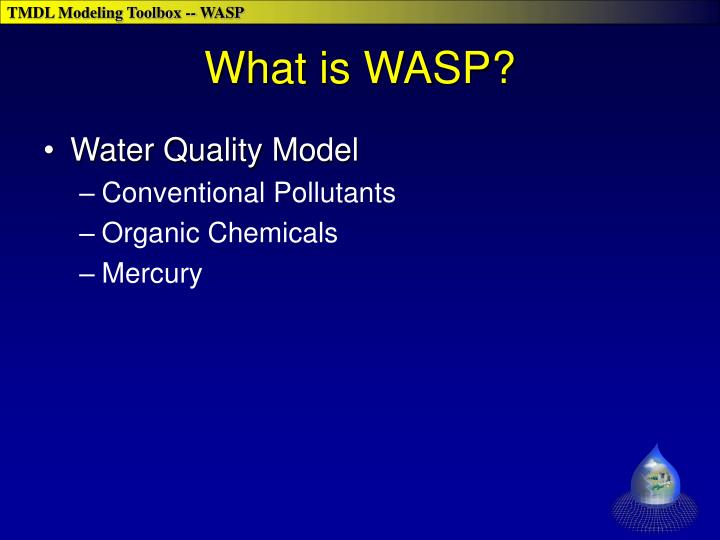 What is wasp