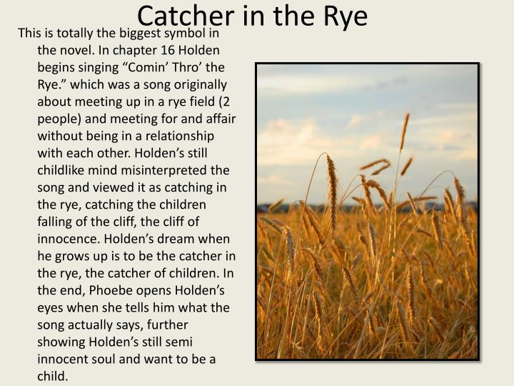 an analysis of catcher in the rye Book summary study guide the catcher in the rye the catcher in the rye study guide gradesaver, the catcher in the rye study guide contains a biography of jd salinger, literature essays, quiz questions, major themes,.