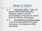 what is utility1