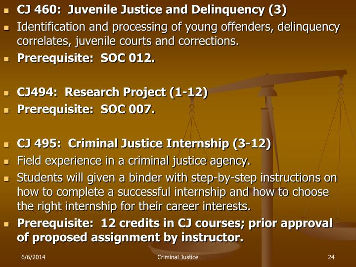 juvenile justice process and corrections