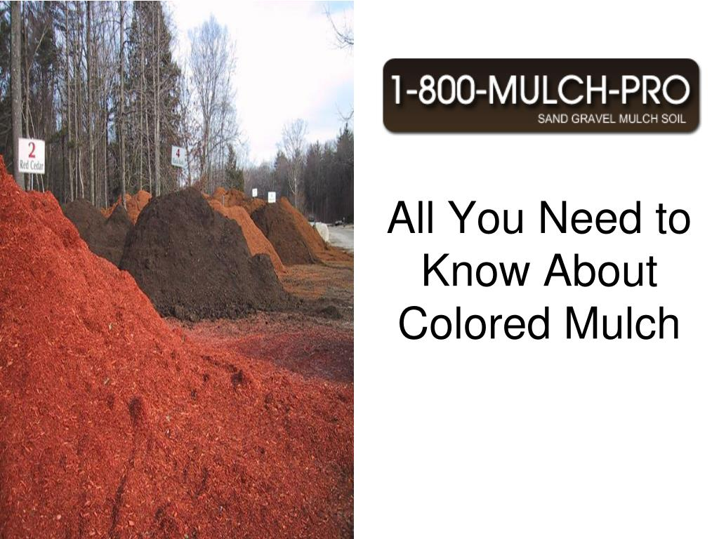 all you need to know about colored mulch l.