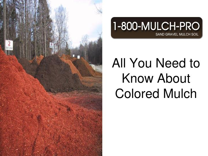 All you need to know about colored mulch