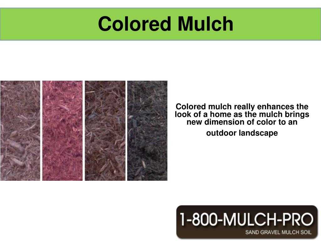 Colored mulch really enhances the look of a home as the mulch brings new dimension of color to an outdoor landscape