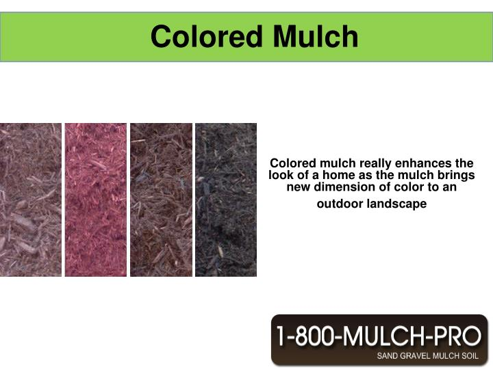 Colored mulch really enhances the look of a home as the mulch brings new dimension of color to an ou...