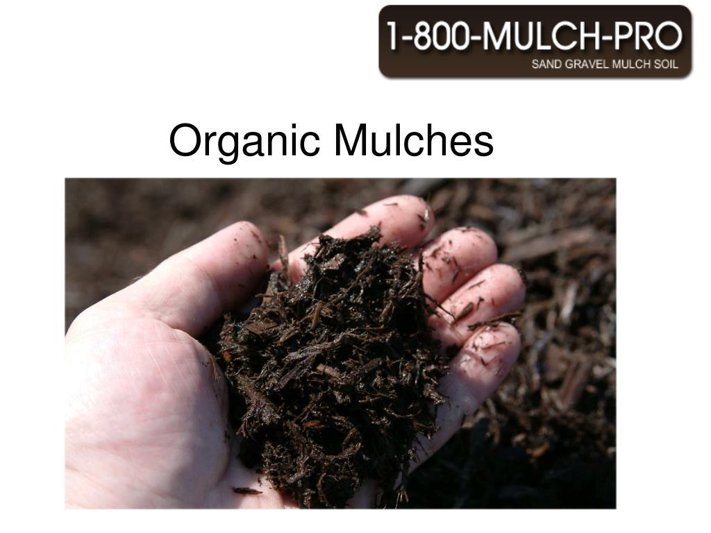 organic mulches l.