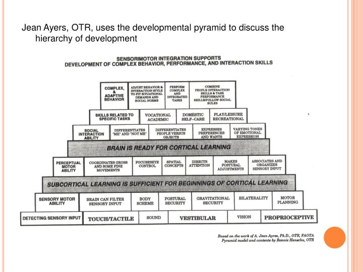 Jean Ayers, OTR, uses the developmental pyramid to discuss the hierarchy of development