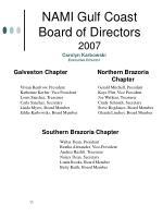 nami gulf coast board of directors 2007