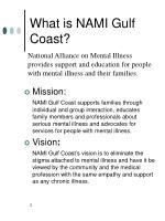 what is nami gulf coast
