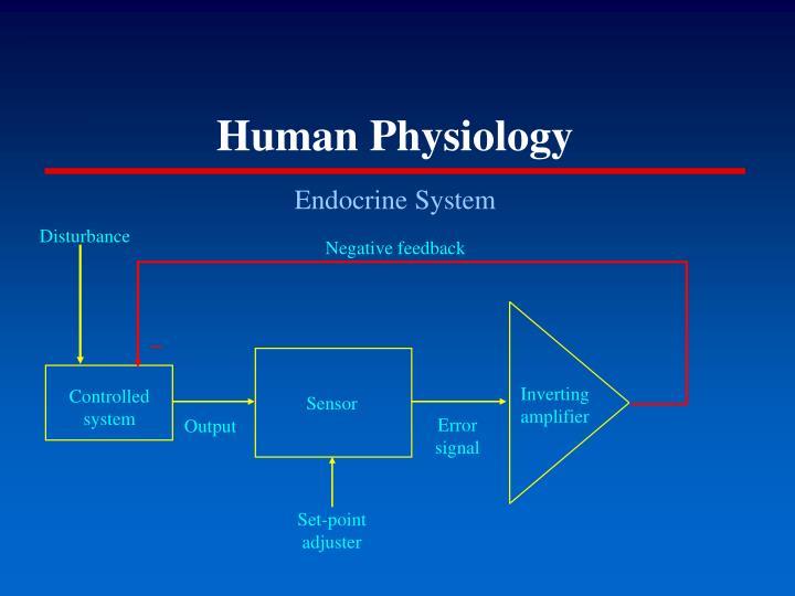 Human physiology2