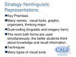 strategy nonlinguistic representations