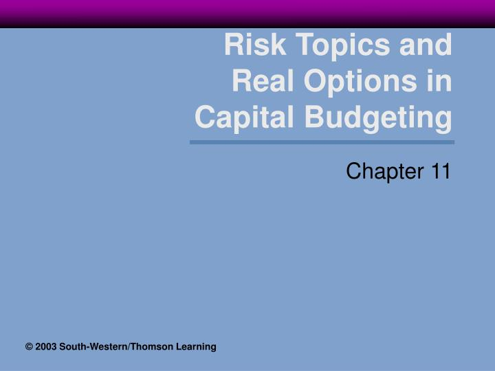 Risk topics and real options in capital budgeting