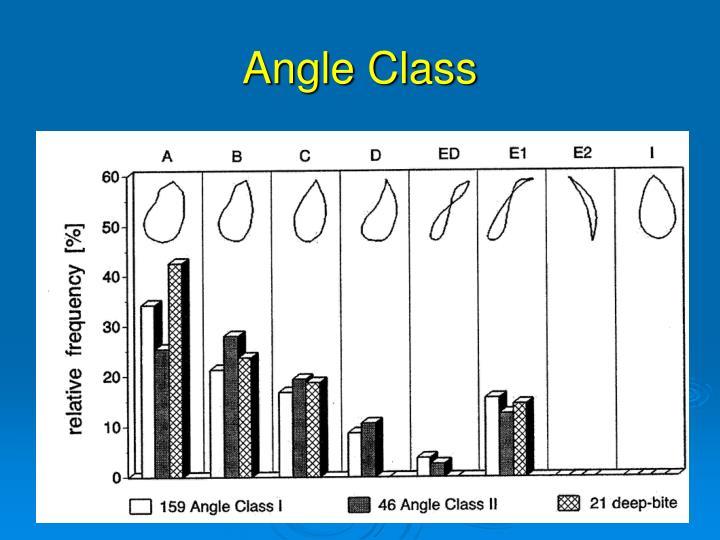 Angle Class