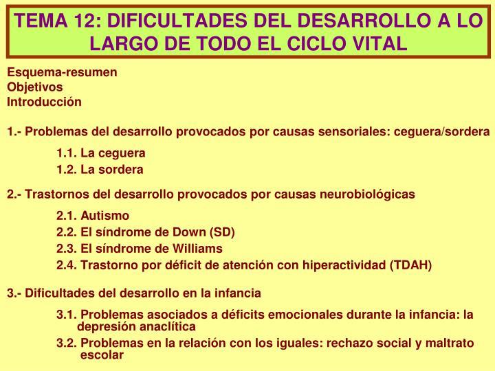 Tema 12 dificultades del desarrollo a lo largo de todo el ciclo vital