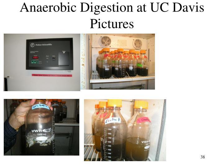 Anaerobic Digestion at UC Davis