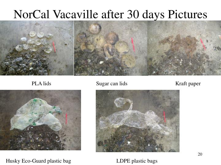 NorCal Vacaville after 30 days Pictures