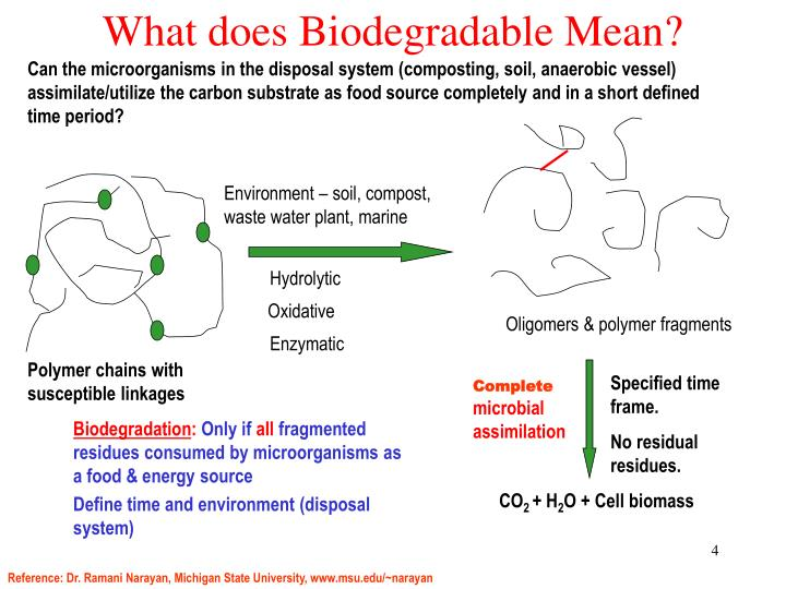 What does Biodegradable Mean?