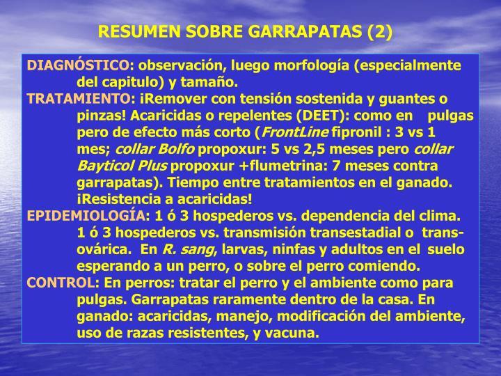 RESUMEN SOBRE GARRAPATAS (2)