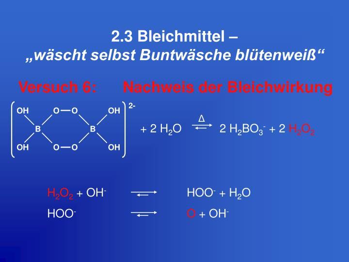 2.3 Bleichmittel –