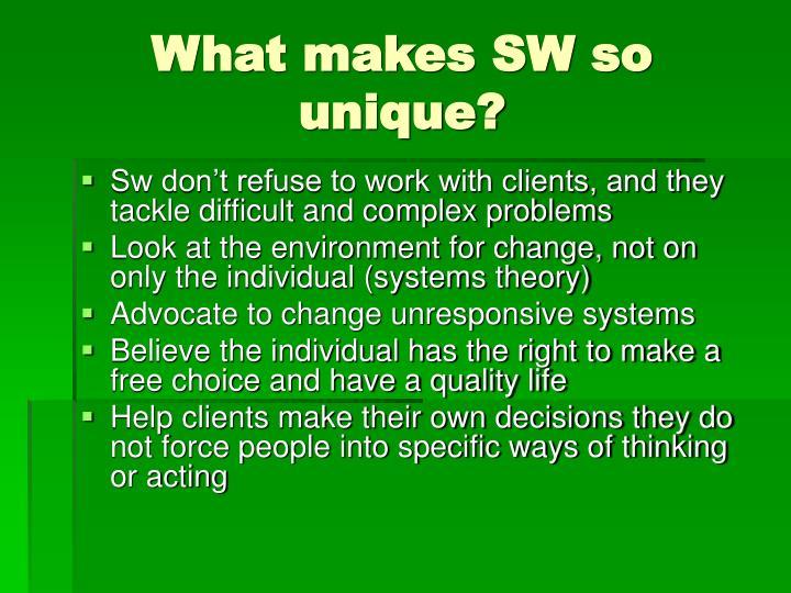 What makes SW so unique?